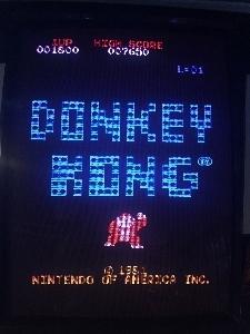 498-DONKEY_USA2.jpg