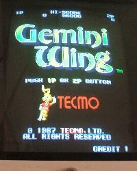 112-GeminiWing.jpg