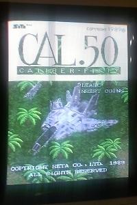288-CAL.50.jpg