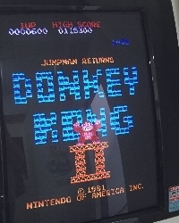 311-DONKEY_KONG2.jpg