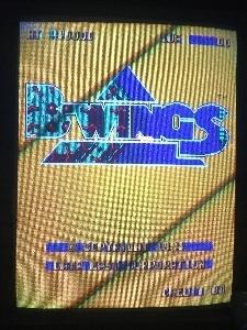 507-B-WINGS.jpg