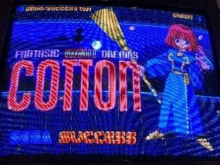 603-COTTON.jpg
